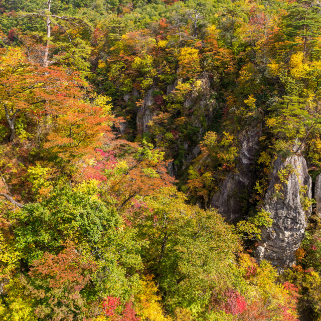 """Naruko Gorge in autumn"" stock image"