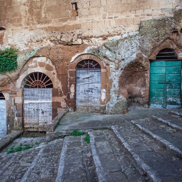 """Italian Doors"" stock image"