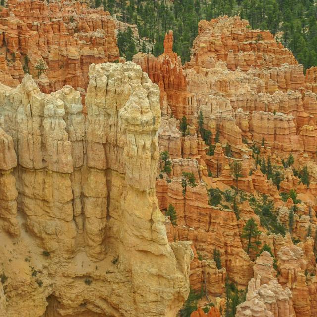 """""""Bryce National Park, Utah"""" stock image"""