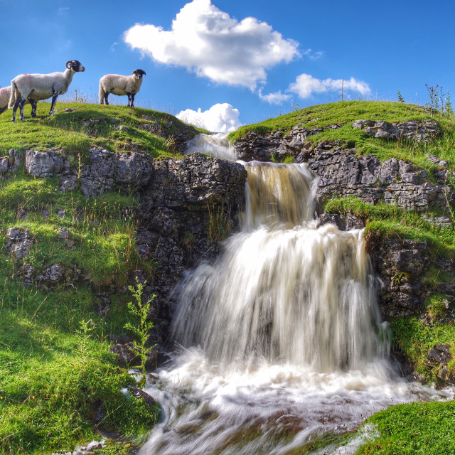 """Waterfall, Langstrothdale"" stock image"