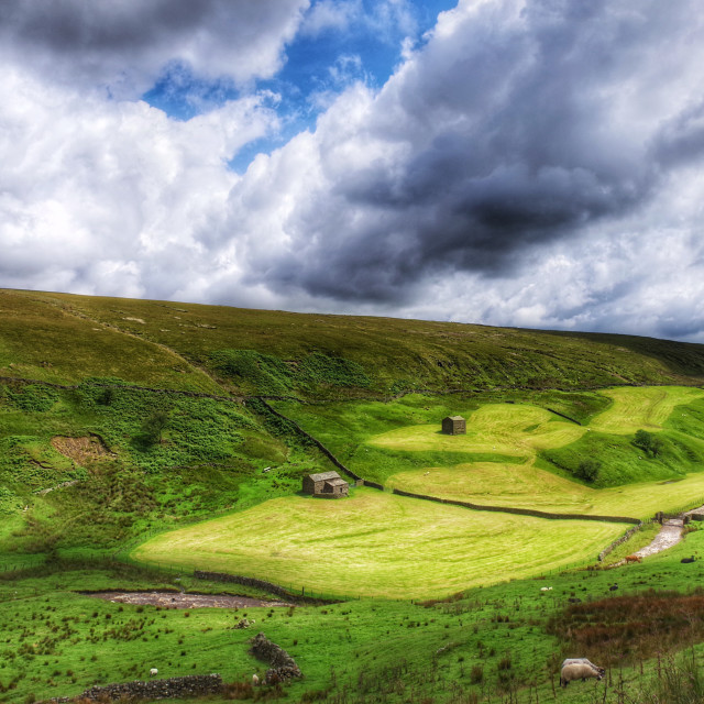 """The Yorkshire Dales"" stock image"