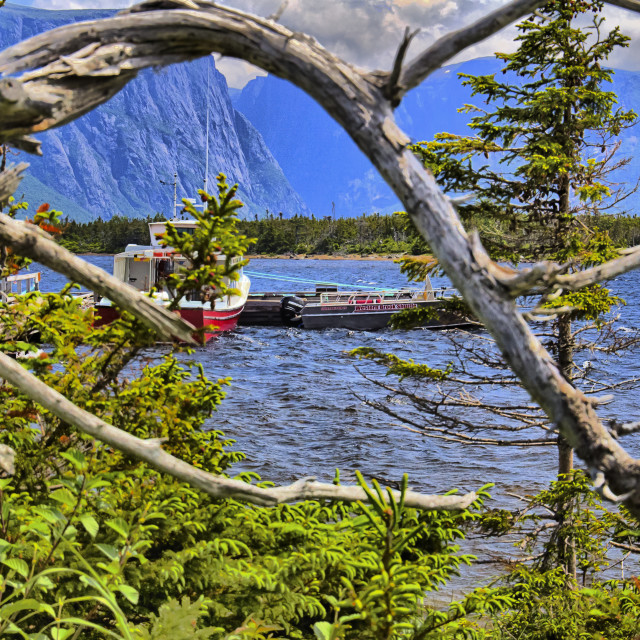 """View of the Western Brook Pond"" stock image"