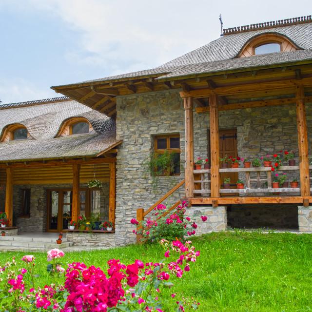 """Flowers at Voronet Monastery"" stock image"