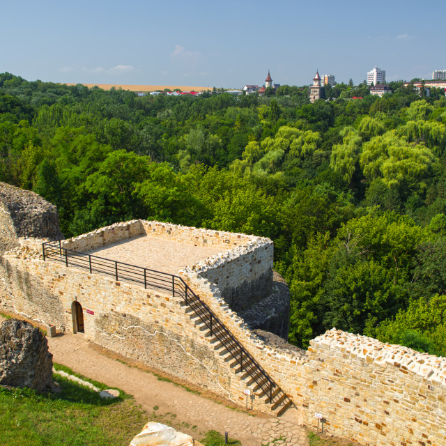 """""""The ruins of the ancient fortress near Suceava"""" stock image"""