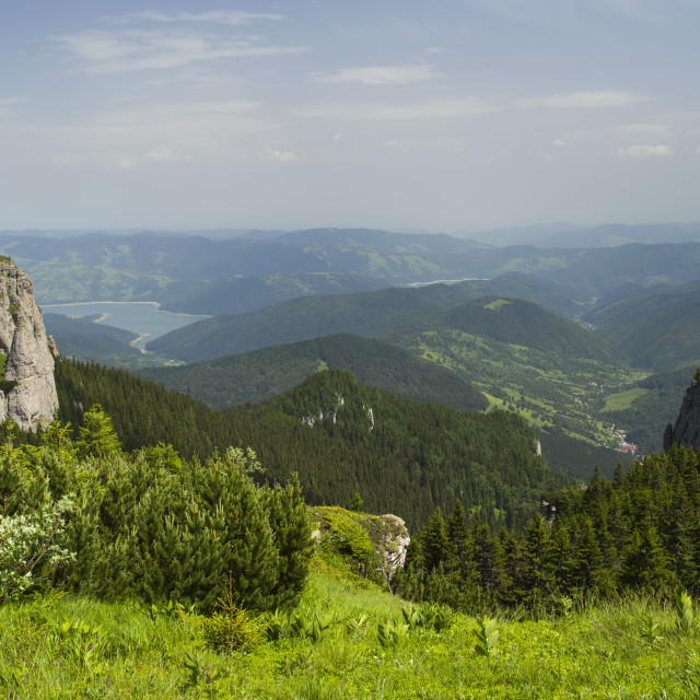 """Summer mountain pasture landscape"" stock image"