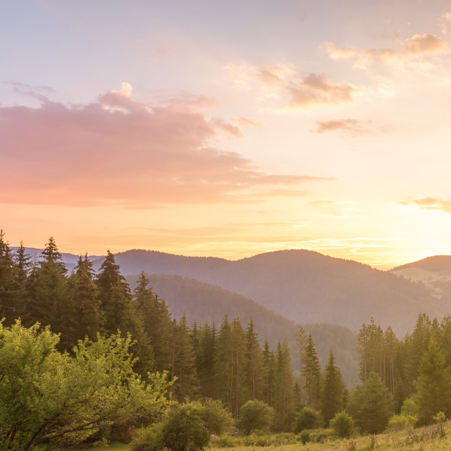"""""""Beautiful summer landscape in the mountains with the sun at dawn"""" stock image"""