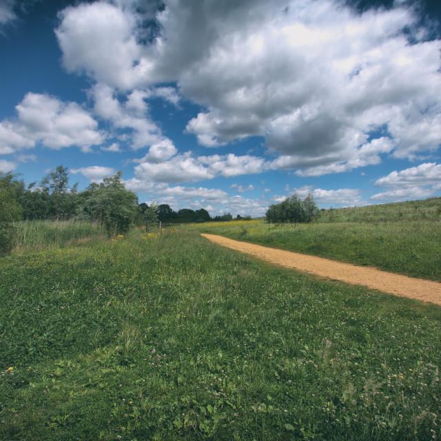 """Path Under Blue Skies"" stock image"
