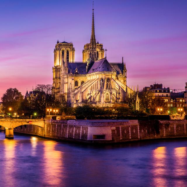 """""""Notre-Dame de Paris"""" stock image"""