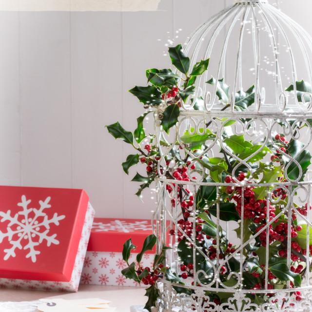 """""""Holiday Birdcage"""" stock image"""