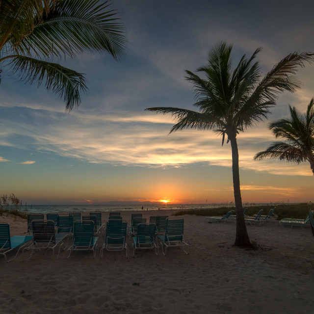 """Anna Maria Island Sunset Palms"" stock image"