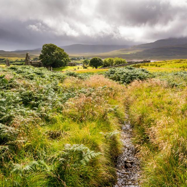 """""""Isle of Skye Landscape"""" stock image"""