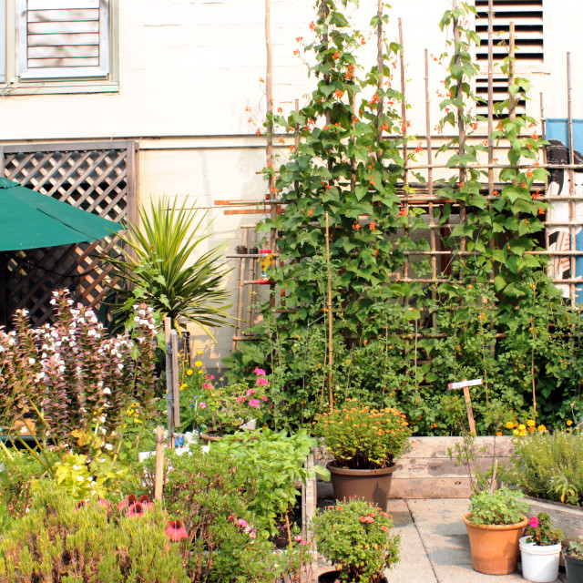 """""""Pike Place Market Rooftop Garden"""" stock image"""