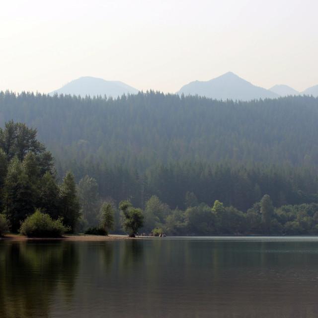 """Seattle Nature Hike"" stock image"