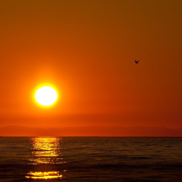 """Simple Sun Ball in Orange Sky Over Water"" stock image"