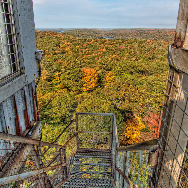 """Metal Staircase Above Autumn View of Forest"" stock image"