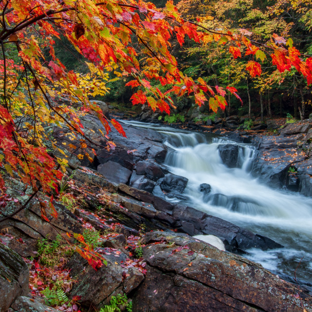 """Unique Waterfall Framed By Red Leaves"" stock image"