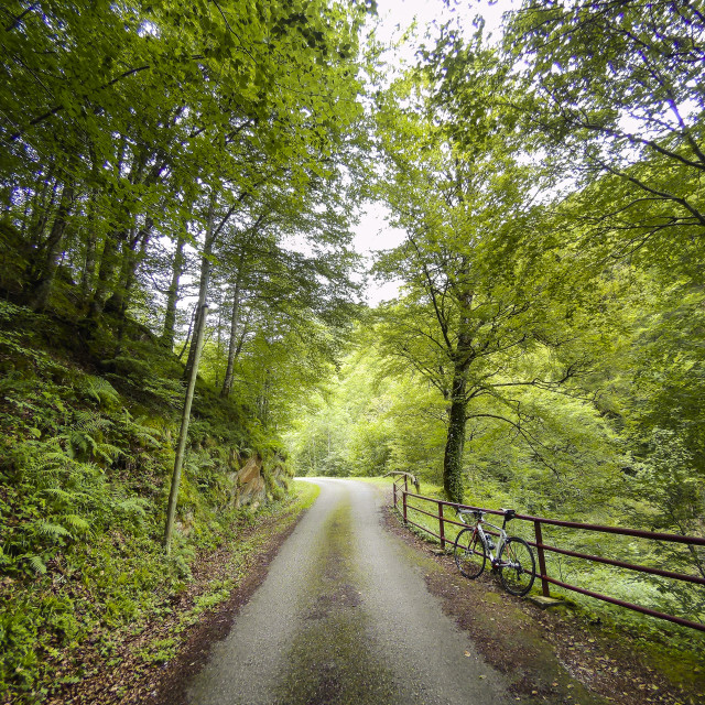 """Back road in the French Pyrenees"" stock image"