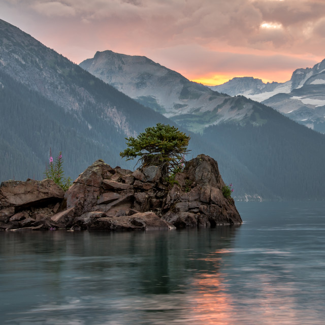 """Lone Tree on Island with Mountains in Background"" stock image"
