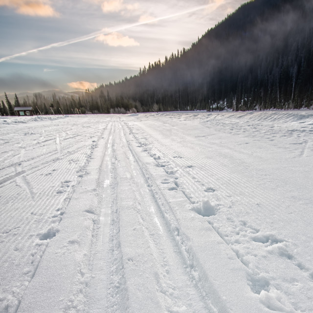 """Cross Country Ski Tracks Going Into Distance"" stock image"