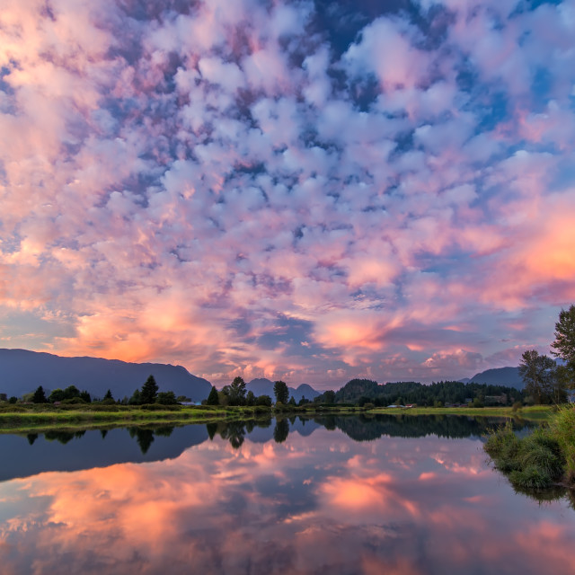 """Pink Clouds Reflected in River"" stock image"