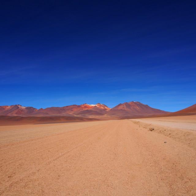"""""""Bolivian desert"""" stock image"""