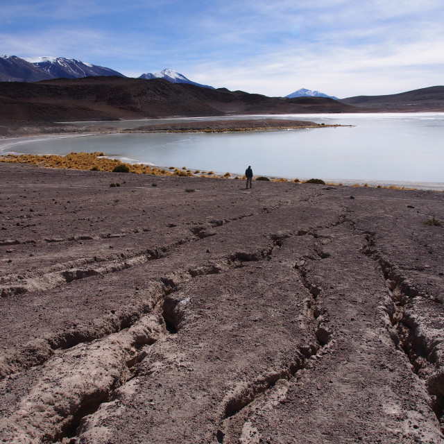 """Bolivian Laguna"" stock image"