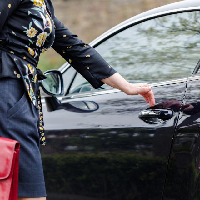 """Youn adult elegant woman with red suitcase open door in luxury c"" stock image"
