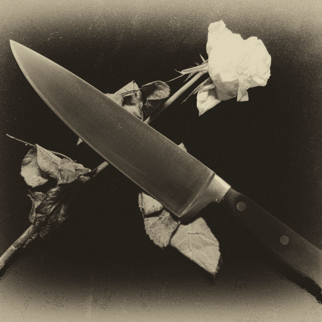 """""""Blood and Roses"""" stock image"""