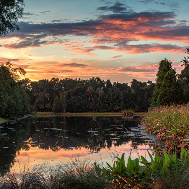 """Celebration Lakes Orlando"" stock image"