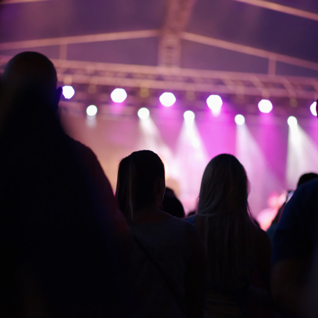 """People at Concert"" stock image"