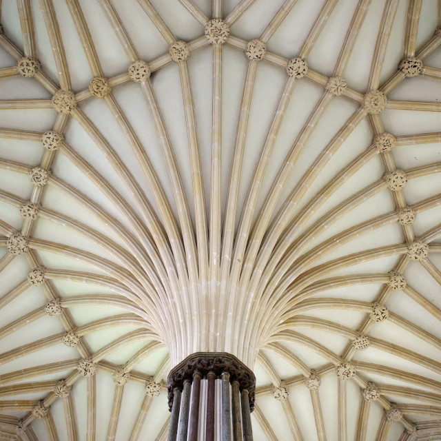 """The tierceron vaulting, Wells Chapter House"" stock image"