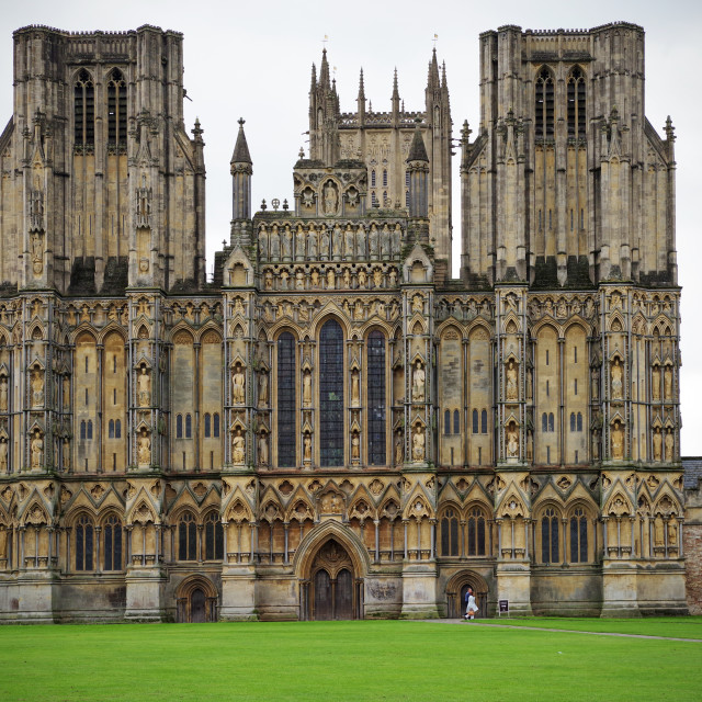 """The West Front, Wells"" stock image"