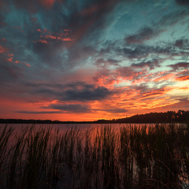 """Sunset Over Lake Dixie Florida"" stock image"