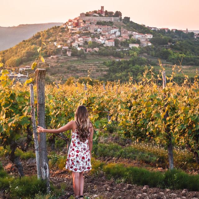 """""""Motovun town in Istria, Croatia"""" stock image"""