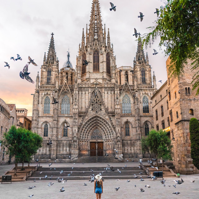 """Barcelona Cathedral in Barcelona, Spain"" stock image"