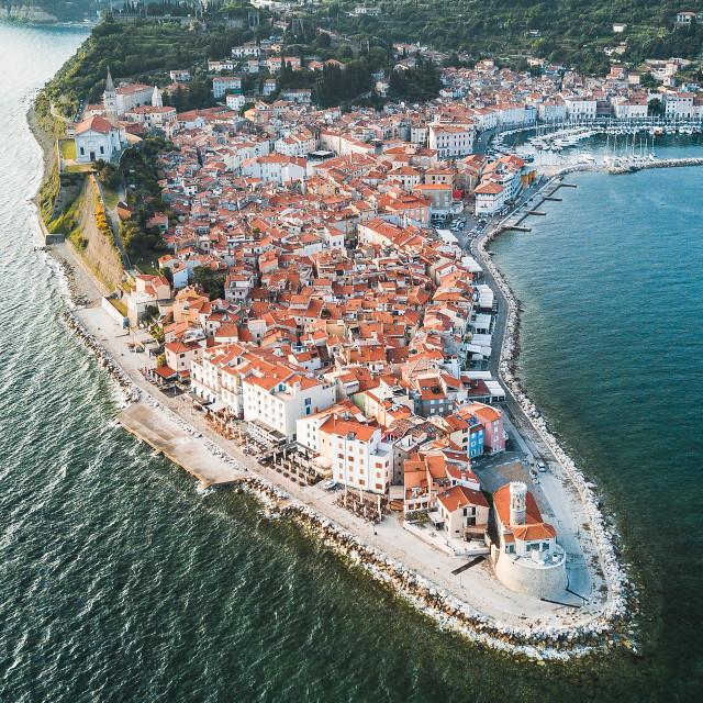 """Piran, Slovenia | Aerial"" stock image"