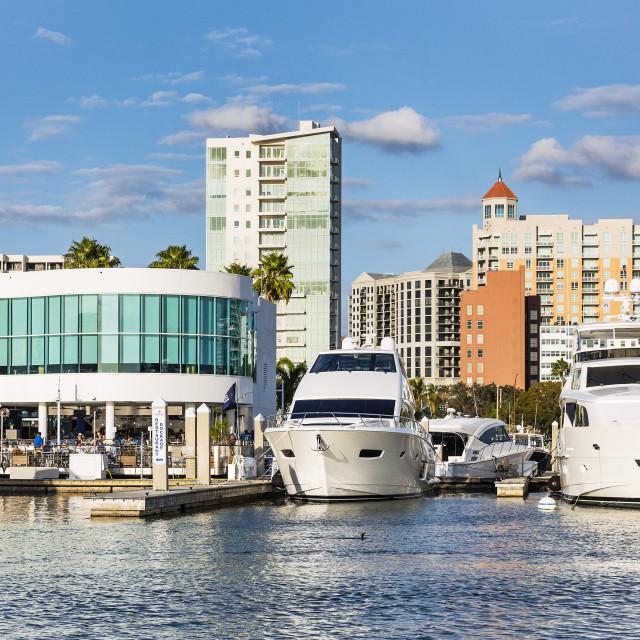 """Marina Jack restaurant and yachts with city skyline, Sarasota, Florida, USA."" stock image"