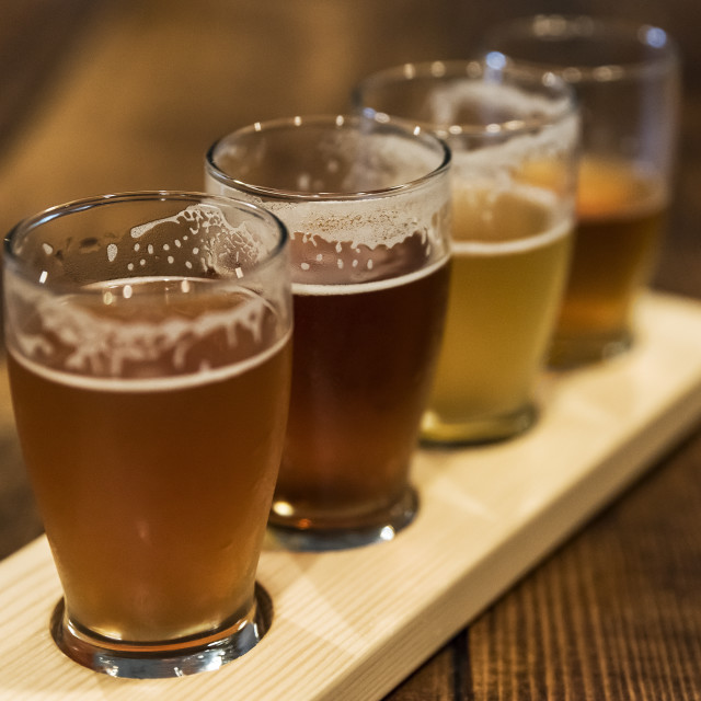 """""""Assorted craft beer samples at a micro-brewery."""" stock image"""