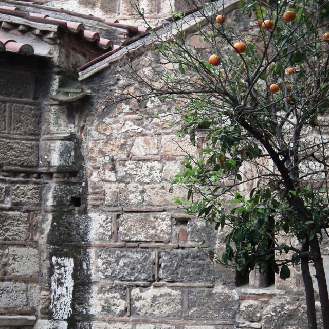 """Greek Church with Orange tree"" stock image"