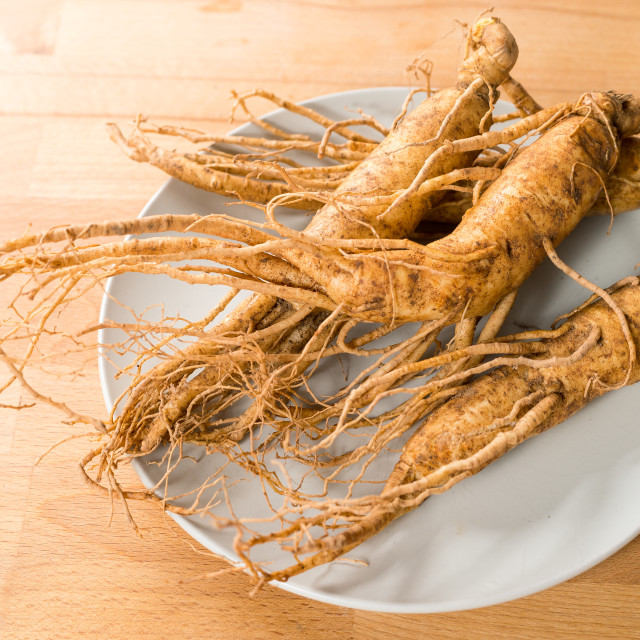 """Fresh Ginseng"" stock image"