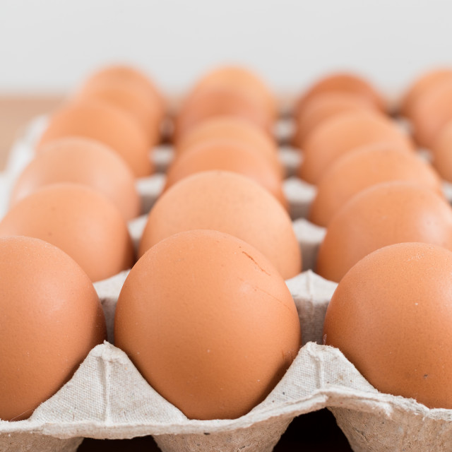 """Chicken Egg in pack"" stock image"