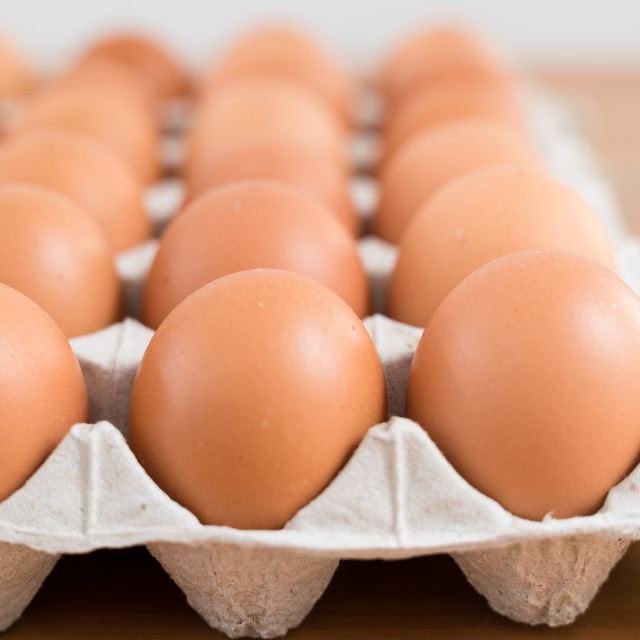 """Egg in pack"" stock image"