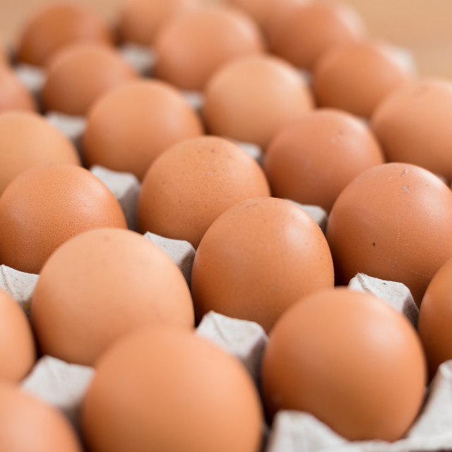 """Chicken egg in package"" stock image"