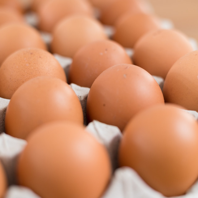 """Fresh chicken egg in package"" stock image"