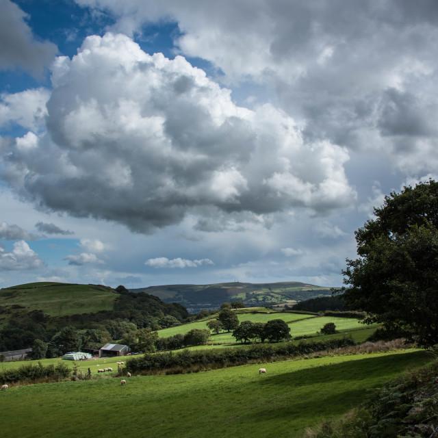 """Hillfarm, Llanwonno."" stock image"