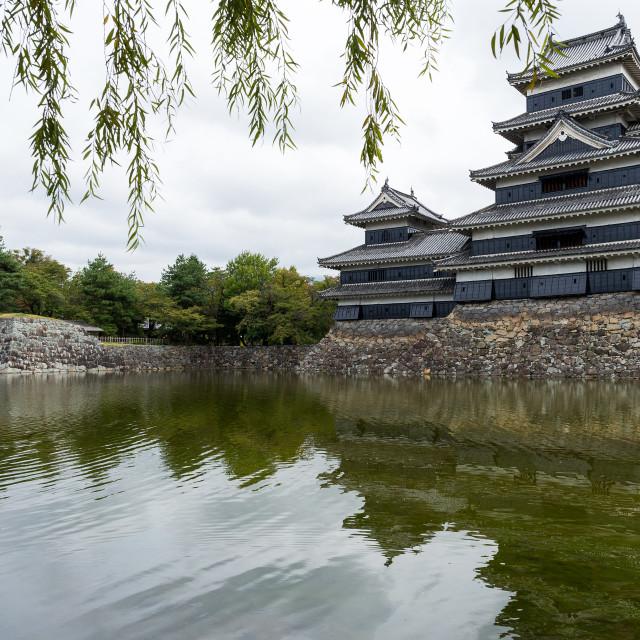 """Japanese Castle, Matsumoto"" stock image"
