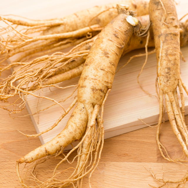 """Korean fresh ginseng"" stock image"