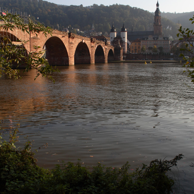 """A view of Heidelberg's bridge, castle and old town"" stock image"