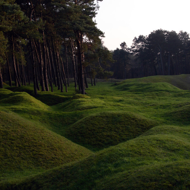 """""""The remains of trenches and shellholes at the Vimy Ridge memorial to Canadian..."""" stock image"""