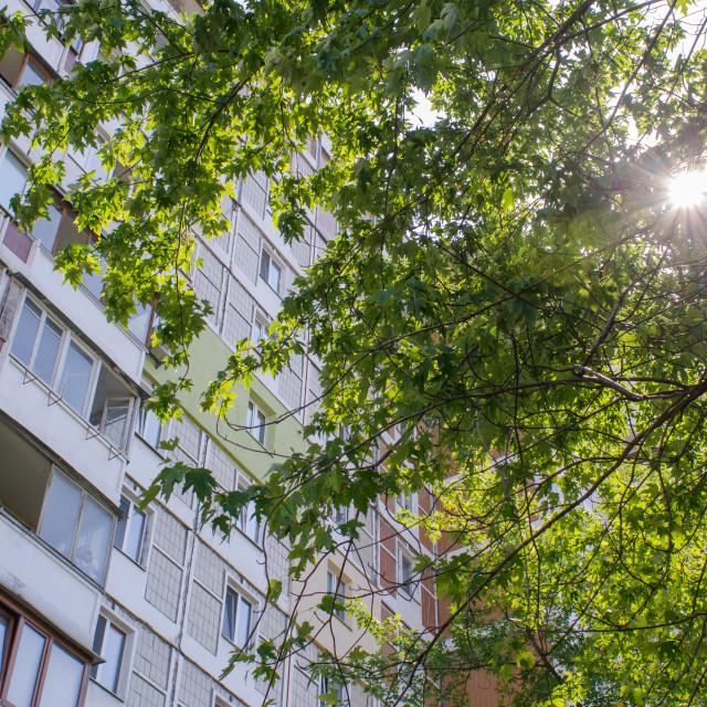 """""""Sunny Urbanization"""" stock image"""
